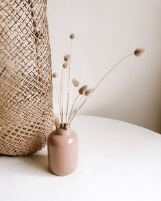 Home Interior Classic fleurs sches Birthday Love, Aesthetic Photo, Aesthetic Design, Deco Design, Home And Deco, Dried Flowers, Color Inspiration, Living Room Decor, Neutral