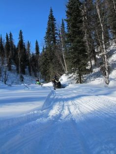 Surfing in CA in the summer and snowmobiling in Alaska in the winter..... What a beautiful world we have.