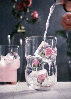 Gratifying Pink Rose Limonade GIF # Food and Drink art caffeine Fancy Drinks, Cocktail Drinks, Yummy Drinks, Cocktail Recipes, Spring Cocktails, Processco Cocktails, Champaign Cocktails, Rose Cocktail, Cinemagraph