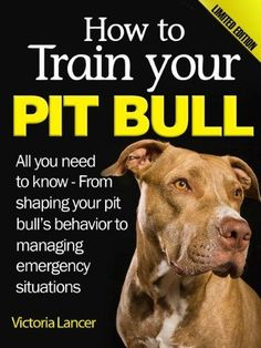 Pit Bull Terrier How to Train Your Pit Bull (Limited Edition) - All you need to know about pitbulls: From shaping your pit bull's behavior to managing emergency situations Pitbull Training, Dog Training Tips, Pit Puppies, Chihuahua Dogs, Pet Dogs, Baby Dogs, Nanny Dog, Dog Mom, Bull Terrier Dog