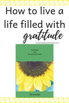 Learn to live a life filled with gratitude with the exercises in this gratitude journal Gratitude Quotes, Gratitude Ideas, Goal Journal, Thing 1, Mentally Strong, Spiritual Wellness, Practice Gratitude, Peaceful Parenting, Love Tips