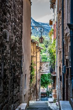 Vence, France  -   hills of the Alpes Maritimes department in the Provence-Alpes-Côte d'Azur region