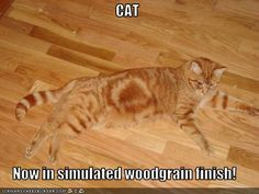 CAT  Now in simulated woodgrain finish!