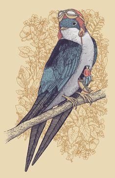 Illustrations by Alvaro Arteaga