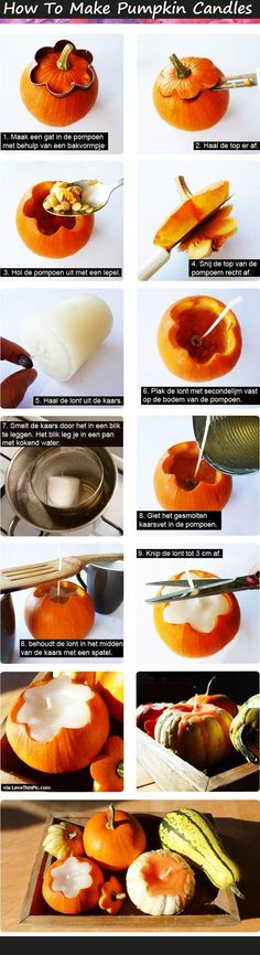 How To Make Pumpkin Candles Pictures, Photos, and Images for Facebook, Tumblr, Pinterest, and Twitter