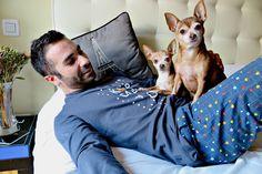 <3Home<3 #cute #dogs #soyunderwear