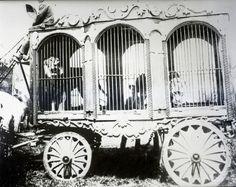 Campbell Bros Circus animal cage wagon. 1908