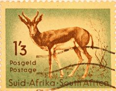 BelAfrique your personal travel planner… African Animals, African Safari, Union Of South Africa, Out Of Africa, Beaches In The World, Vintage Stamps, My Land, Stamp Collecting, Mammals
