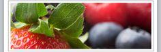 Fruit – Vegetables – Honey West Jefferson – North Carolina