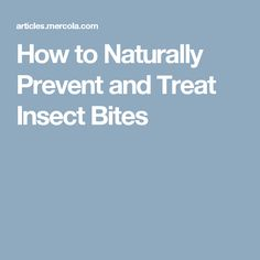 How to Naturally Prevent and Treat Insect Bites
