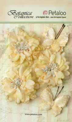 Petaloo - Botanica Collection - Floral Embellishments - Mums and Butterflies - Ivory