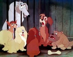 Cartoon Characters and Animated Movies: Lady and the Tramp Walt Disney, Disney Dogs, Disney Films, Disney Magic, Disney Art, Disney Pixar, Kitsch, Dog Pounds, Disney Kunst