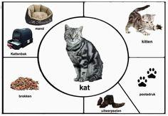 Fall Preschool Activities, Animal Activities, Preschool Printables, Preschool Science, Montessori Activities, Preschool Kindergarten, Science For Kids, Farm Animal Crafts, Farm Animals