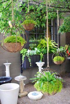 Jardín de estilo translation missing: es.style.jardín.moderno de jardines verticales