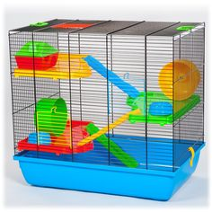 Související obrázek Parrot, Home Appliances, Bird, Animals, Parrot Bird, Home Electronics, Kitchen Appliances, House Appliances, Animaux
