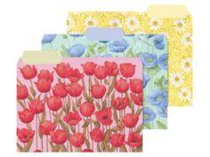 Floral File Folders | Floral Beauty - File Folders | review | Kaboodle
