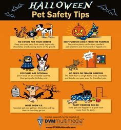 Halloween is for everyone! Enjoy with your lovable monsters, but follow these safety tips.