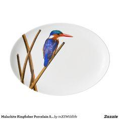 Shop Malachite Kingfisher Porcelain Serving Platter created by inXSWildlife. African Safari, Kingfisher, Serving Platters, Malachite, Wildlife Photography, Vibrant, Porcelain, Fancy, Dining