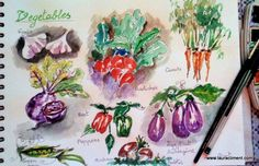 Watercolor on sketchbook- Beets, It Is Finished, Gardens, Watercolor, House, Watercolor Painting, Home, Garden, Haus