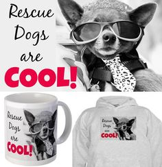 """I'm celebrating 1 year of FREEDOM!  For a limited time you can purchase """"Rescue Dogs are COOL!"""" merchandise at National Mill Dog Rescue's CafePress store. Click here: http://www.cafepress.com/nationalmilldogrescue/11511857"""