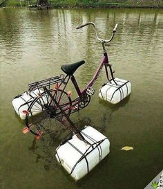 20 brilliant inventions created by creative people (New Pics) Pimp Your Bike, Cool Inventions, Creative People, Survival Skills, Diy And Crafts, Recycling, Funny Pictures, Random Pictures, Diy Projects