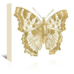 East Urban Home Butterfly-1 by Amy Brinkman Graphic Art on Wrapped Canvas Size: