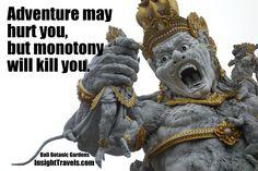 Adventure may hurt you, but monotony will kill you.  (Bali Botanic Gardens)
