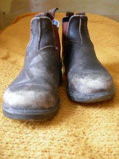 Blundstone Boots they are the most comfortable boots! Blundstone Boots, Comfortable Boots, Your Shoes, Chelsea Boots, Shoe Boots, Footwear, Mens Fashion, Stylish, My Style