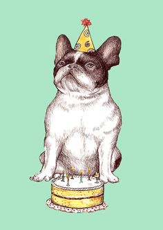 'Happy Birthday', to me of course, French Bulldog, watercolour, illustration.