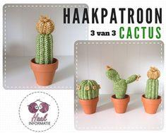 Haakpatroon cactus 3 van 3