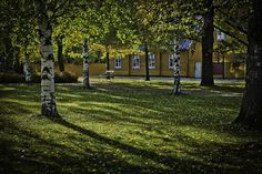 Beautiul Lahti...my home town in Finland <3