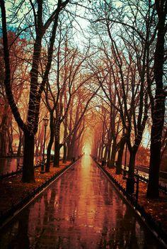 Primorsky #Boulevard in Odessa, Ukraine.