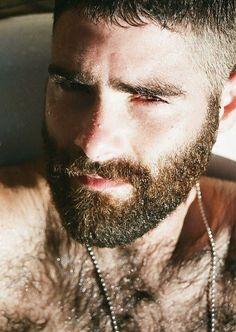 Beard du Jour 29