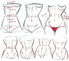 Exceptional Drawing The Human Figure Ideas. Staggering Drawing The Human Figure Ideas. Human Figure Drawing, Figure Drawing Reference, Body Drawing, Anatomy Reference, Hand Reference, Figure Drawing Tutorial, Female Pose Reference, Manga Drawing, Head Anatomy