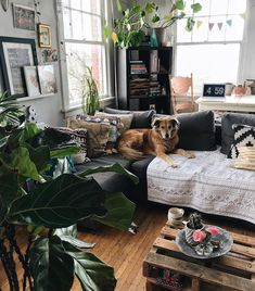 Most up-to-date Free dog areas in apartments small spaces Suggestions The use of a dog kennel has always been a significant position of rivalry in the dog's perspective Living Room Modern, Home Living Room, Apartment Living, Living Spaces, Apartment Hacks, Studio Apartment, Small Living, Dog Spaces, Small Spaces