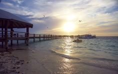 Heron Island  Read more: http://www.traveltherenext.com/eat-and-sleep/item/38-green-escapes-qld  #australia #queensland #gogreen #ecotourism #holiday #experience #relax #holiday #travel #sunset #heronisland #island #beach