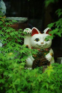 A maneki neko ( lucky cat ) in a garden, japan