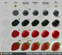 Exercise 36 Results: Berries Step by Step Chart We are berry proud to have our latest exercise results up with a full step by step! Check out the full post here: http://cgcookie.com/concept/2015/02/10/exercise-36-berries/