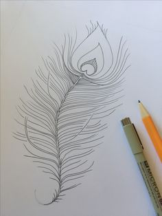 original sketch, peacock feather, pen and ink, possible tattoo idea Black And White Lines, Peacock, Art Nouveau, How To Draw Hands, Original Art, Feather, Sketch, Ink, The Originals
