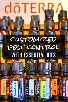 My daughter screams bloody murder when there's a fly in the house. Find out what I do to keep pests at bay. Customized Pest Control with Essential Oils