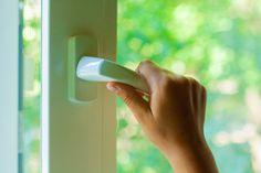10 aprócska lény, ami mind megbújhat a lakásodban - Otthon | Femina Security Gadgets, Taking Advantage, Home Security Systems, Mindfulness, Windows, Sun, Night, Natural, Consciousness