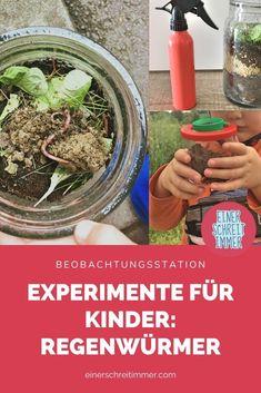 Regenwürmer beobachten geht mit diesem einfachen Experiment für Kinder ganz leicht: Hier kannst du die Natur ins Kinderzimmer holen. Du brauchst die Regenwürmer nicht zu kaufen, sie vermehren sich ganz einfach im Glas. Das Experiment kannst du im Kindergarten, in der Kita und auch in der Grundschule ganz einfach nachmachen. VIEL FREUDE DAMIT!   #einerschreitimmer #mamablog #experimente #experimentieren #natur #montessori