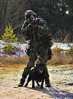 STOP! K9 Police, Military Police, Military Personnel, Military Weapons, Usmc, Military Working Dogs, Military Dogs, The War Zone, War Dogs