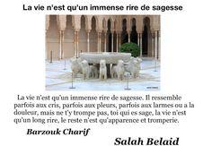 La Pensée Du Jour: Un immense rire de sagesse (Barzouk Charif )