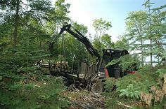 the image portrays the man-made machines used for taking down plant life
