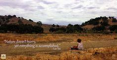 Inspirational Nature Quote - Lao Tzu | www.MommyHiker.com