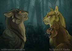 Tigerclaw's Fury. Ch. VIII by Spirit-Of-Alaska.deviantart.com on @DeviantArt
