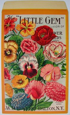 LITTLE GEM, Collection of Flower Seeds, Antique Seed Packet