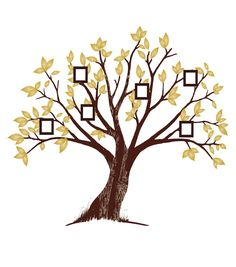 Show off your family tree! Love this peel & stick wall kit from @DCWV Inc.