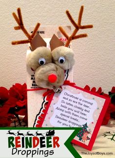 Reindeer Droppings For You to Eat.  Fun Christmas gift idea from The Joys of Boys.